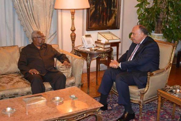 سامح شكري يستقبل رئيس بعثة الاتحاد الإفريقي لمتابعة الانتخابات البرلمانية