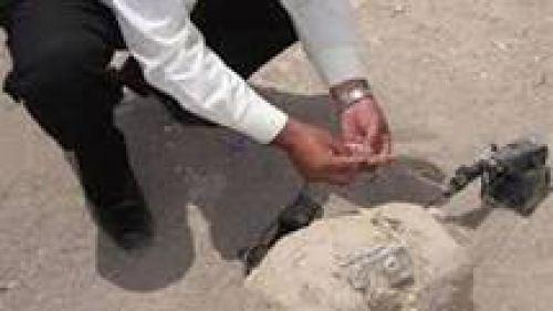 إبطال مفعول عبوة ناسفة وضعها مجهولون أمام لجنة انتخابية بحى قحافة فى الفيوم
