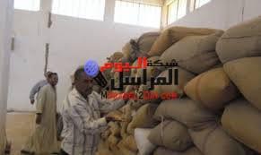 تفتيش مخازن وشون البنك للتأكد من صلاحية محصول القمح الذي تم تسلمه هذا الموسم من مزارعي محافظة الوادى الجديد .