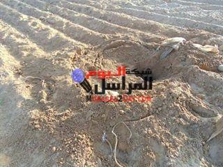 بالصور إكتشاف قوات إنفاذ القانون بشمال سيناء جسم نفق رئيسى متفرع منه 3 أنفاق جنوب رفح