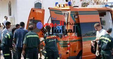 أصابة 9أفراد شرطة من بينهم ضابط إثر  إنقلاب سيارة شرطة كانو يستقلونها أعلى كوبرى طملاى بطريق السادات منوف.