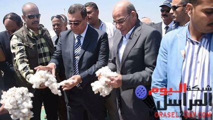 بالصور وزير الزراعة ومحافظ الفيوم يفتتحان موسم جني القطن بالمحافظة احتفالا بعيد الفلاح