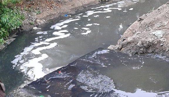 المزارعون في الفيوم يستخدمون مياه الصرف في ري الأراضي