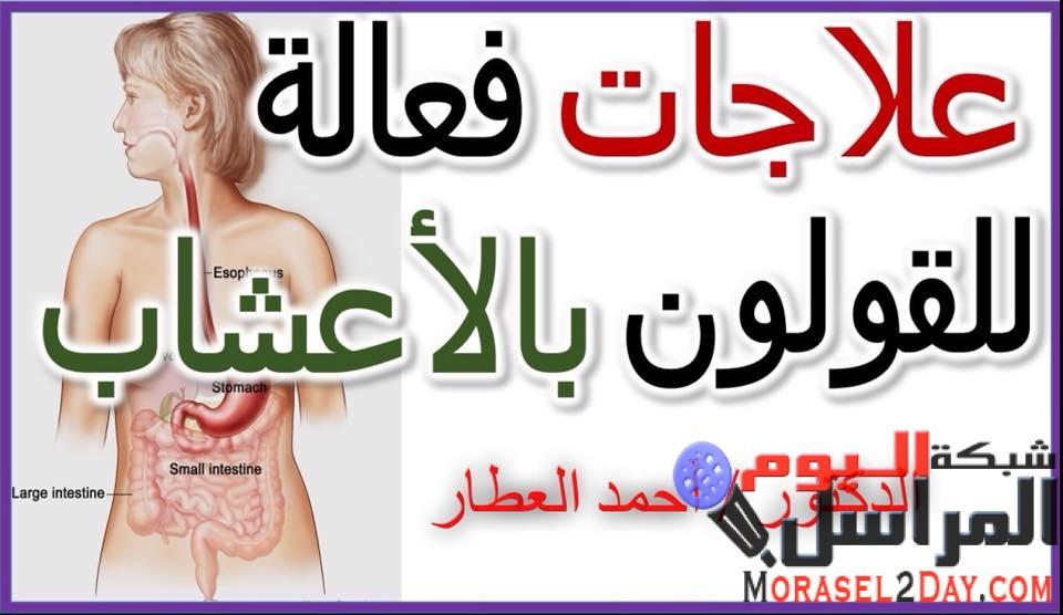 مشروبات لعلاج القولون والإنتفاخات :-