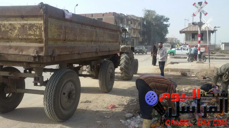 حملات نظافة وتجميل في بندر ومركز دمنهور