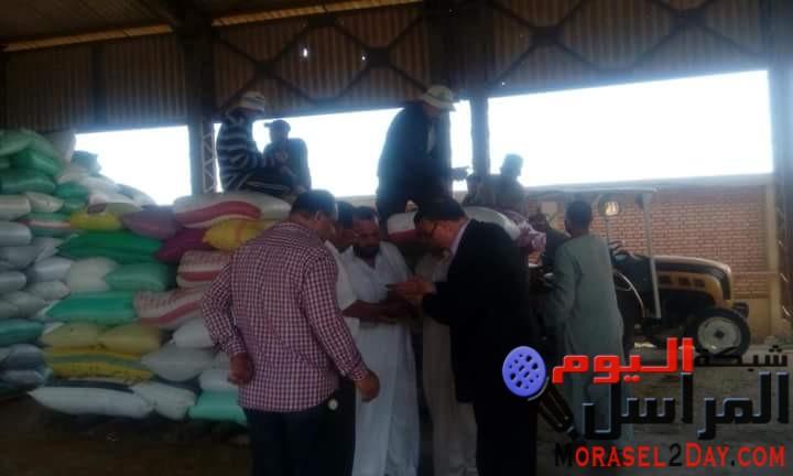 رئيس مدينة شبراخيت يتابع توريد محصول القمح بشونة حمدي بالبحيرة