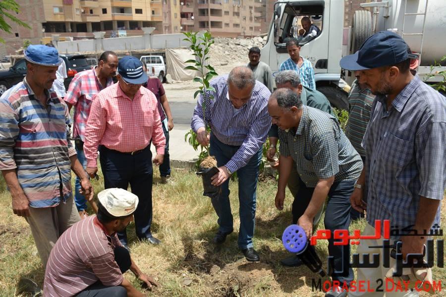 """بالصور…الدالــى يشارك فى مبادرة """"1000 شجرة مثمرة"""" بإمبابة"""