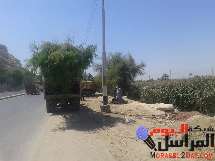 بدء أعمال مبادرة شجر بلدك بنزلة حسين بالمنيا