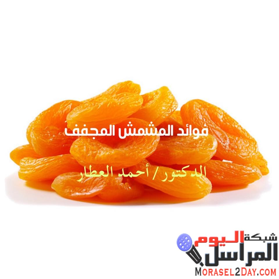 فوائد المشمش المجفف مع الدكتور / أحمد العطار