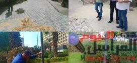 الدكتور مهران عبد اللطيف دينامو المحليات فى رئاسة الأحياء