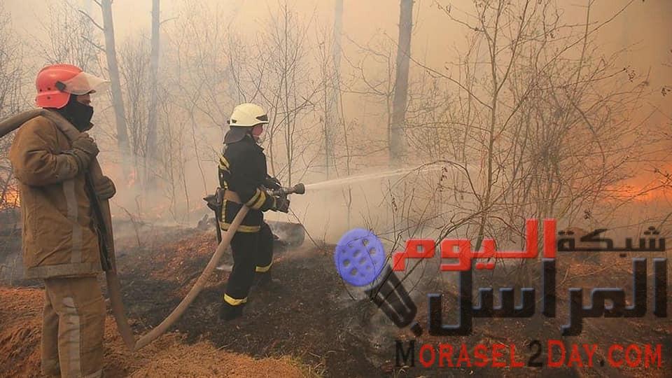 حرائق غابات متواصلة على بعد كيلو مترات من محطة شيرنوبل النووية