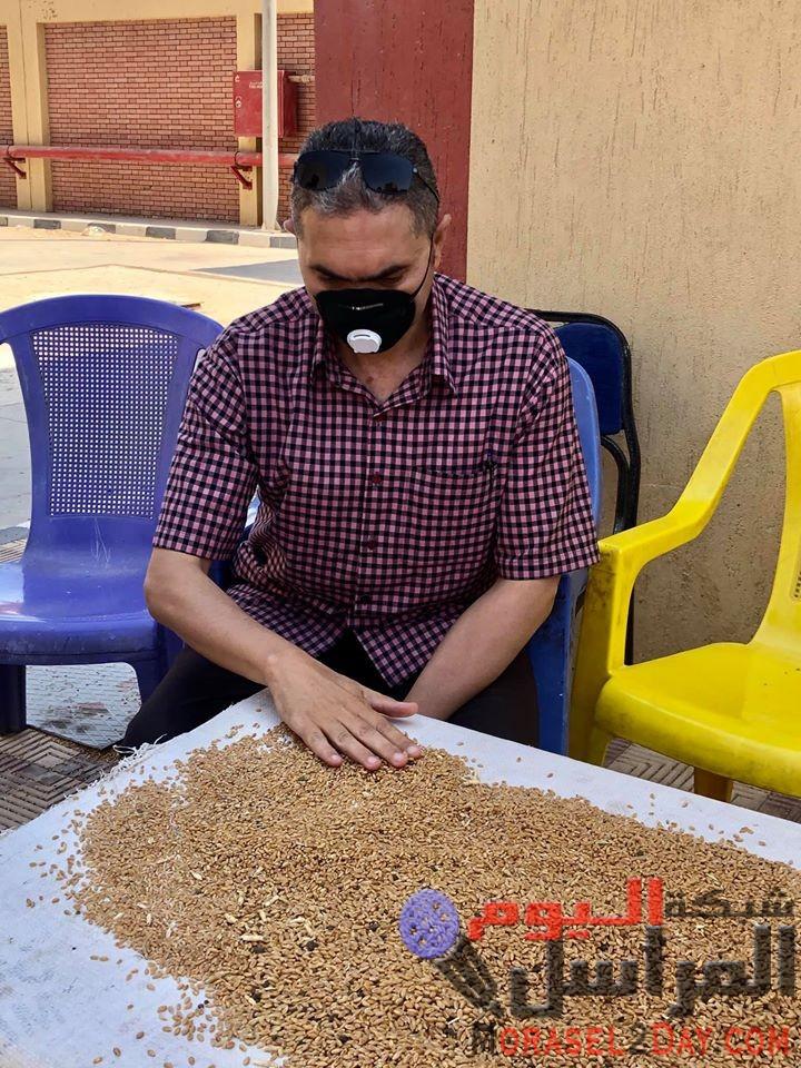 تموين الفيوم : 127 ألف طن قمح حصيله انتهاء موسم توريد القمح من المزارعين لموسم 2020 بالفيوم
