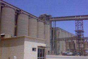 شعيرة٢١٠ مليون جنية راس مال شركة شرق مطاحن الدلتا