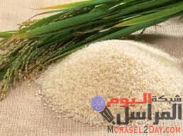 وزير التموين وزير التموين يصدر تصريحات بشأن الأرز ونبيل أبوالياسين يرد